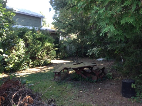 Spacious, shady and very private backyard
